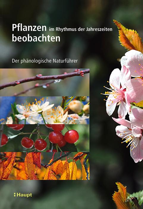 Buchcover ©Hauptverlag