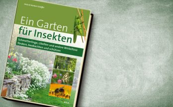 Buchcover © Aula Verlag