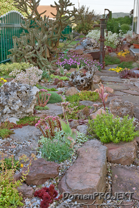 Steingarten mit trockenheitsverträglichen Stauden ©DornenProjekt