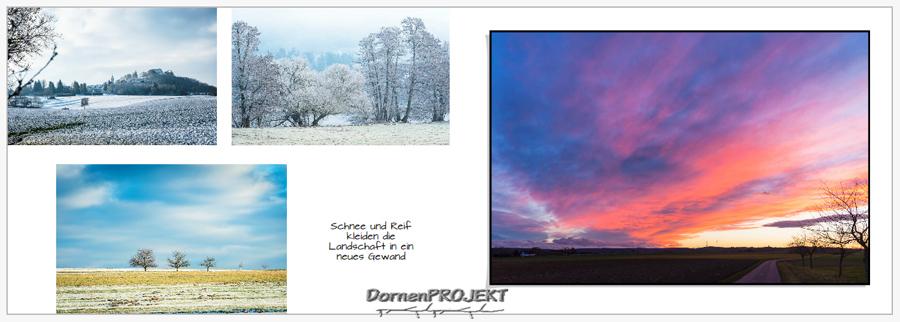 Beispiel 1 aus meinem Fotobuch ©DornenProjekt