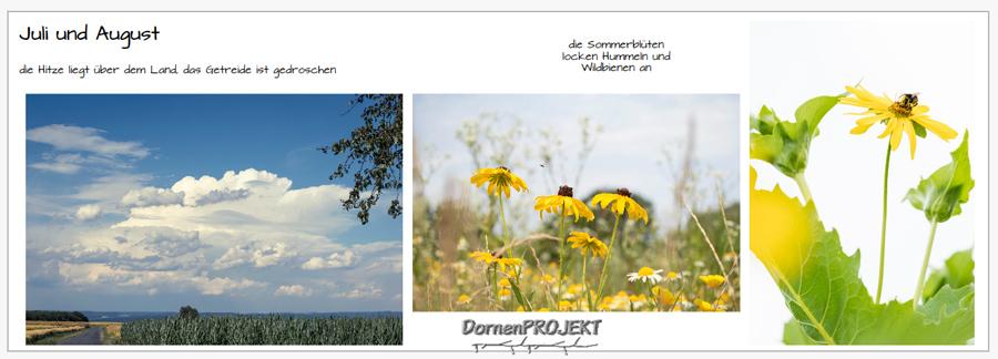 Beispiel 2 aus meinem Fotobuch ©DornenProjekt