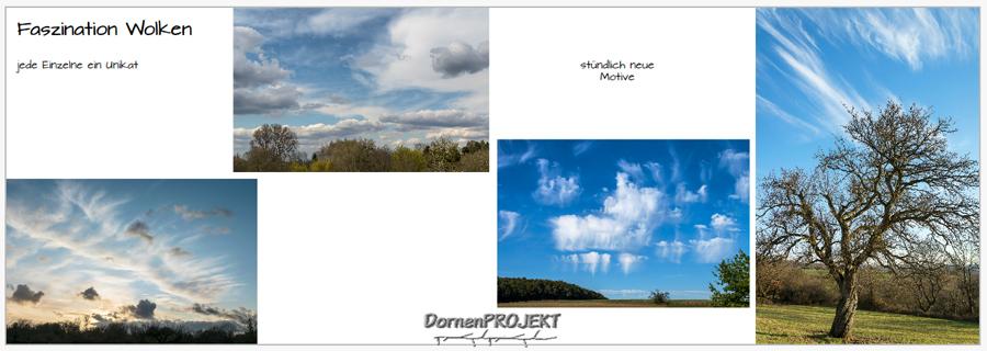Beispiel 3 aus meinem Fotobuch ©DornenProjekt