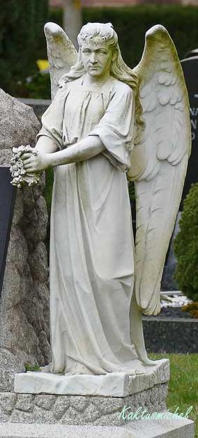 Grab mit Engel ©Kaktusmichel (Der Friedhof lebt Artenvielfalt)